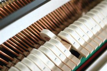 ซ่อมเปียโน (15)